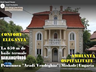 Aradi-Vendeghaz